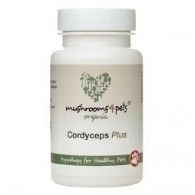 Cordyceps Plus - 60 capsules