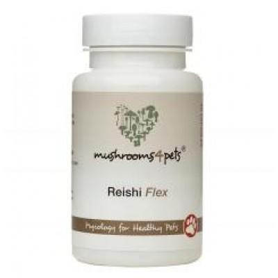 Reishi Flex - 60 capsules