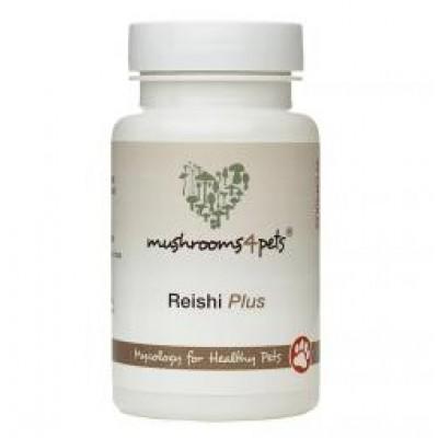 Reishi Plus - 60 capsules