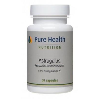 Astragalus (0.5% astragalaside IV) - 60 capsules