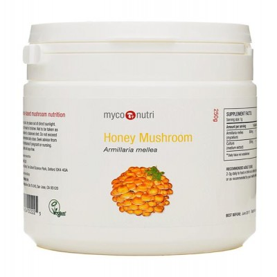 MycoNutri Honey Mushroom 250g powder (Armillaria mellea)